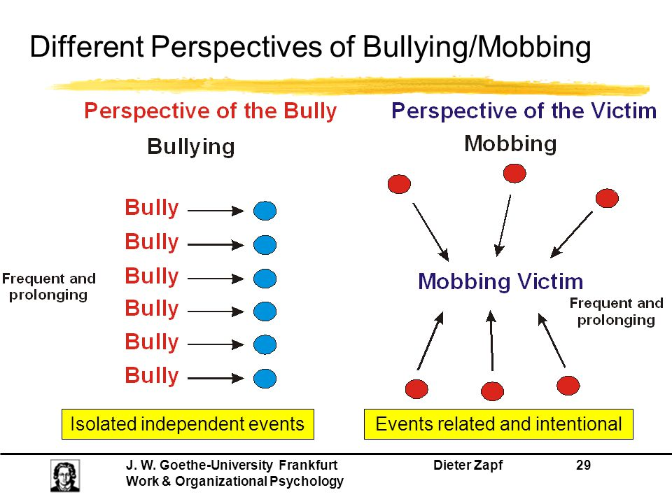 Different Perspectives of Bullying/Mobbing