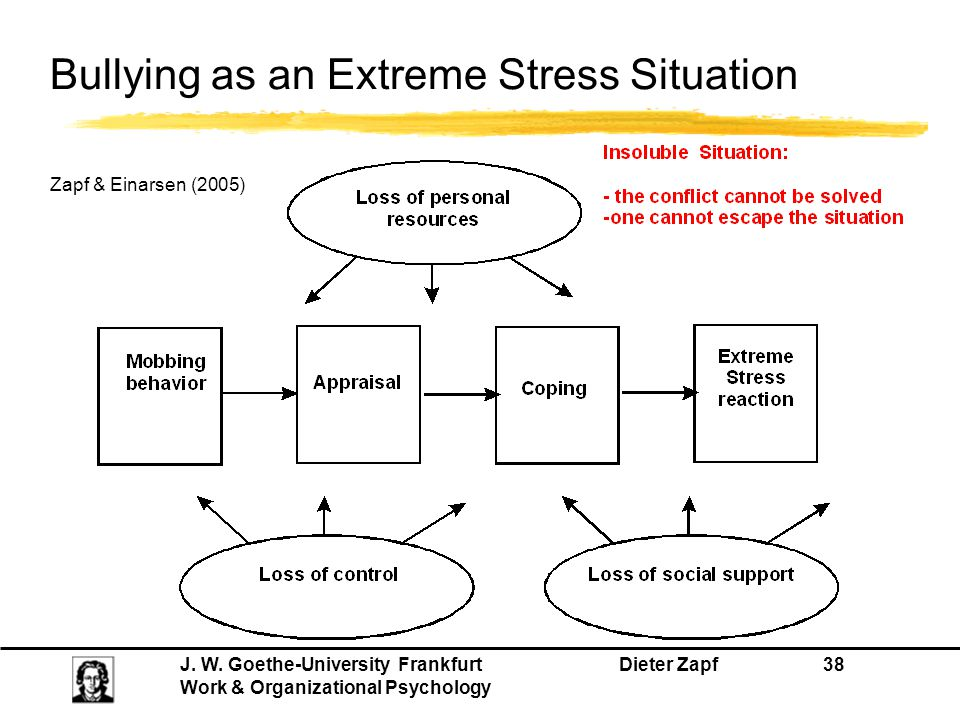 Bullying as an Extreme Stress Situation