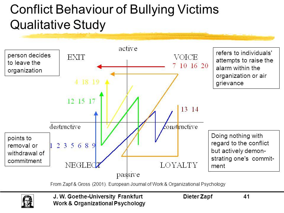 Conflict Behaviour of Bullying Victims Qualitative Study