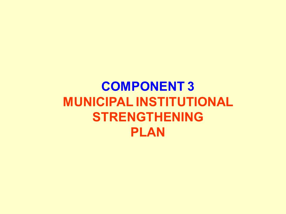 MUNICIPAL INSTITUTIONAL STRENGTHENING