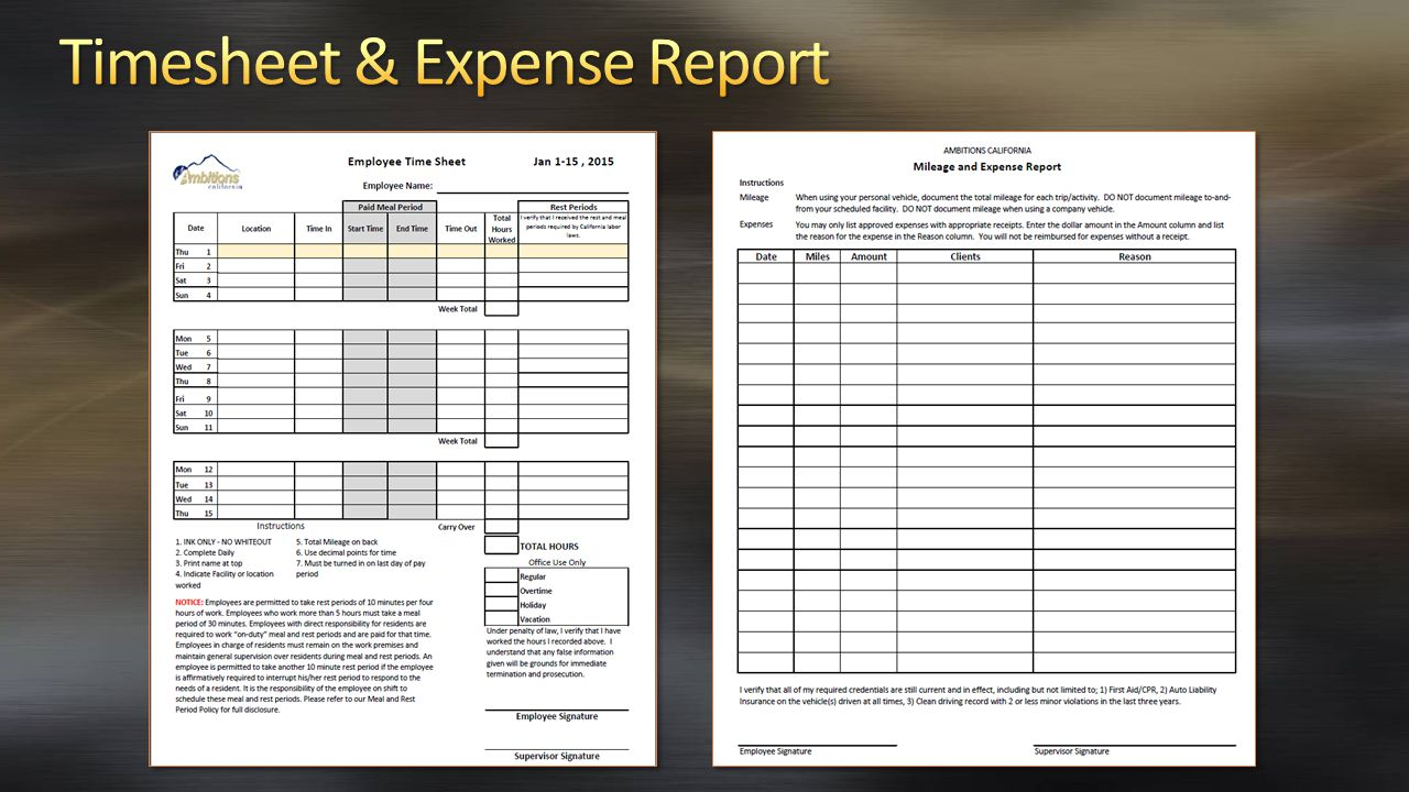 Timesheet & Expense Report