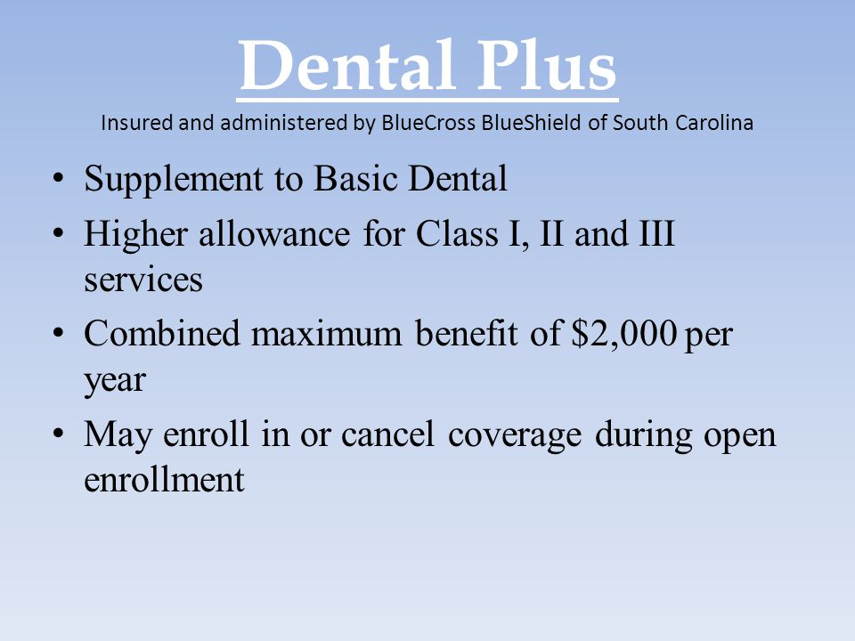 Dental Plus Insured and administered by BlueCross BlueShield of South Carolina