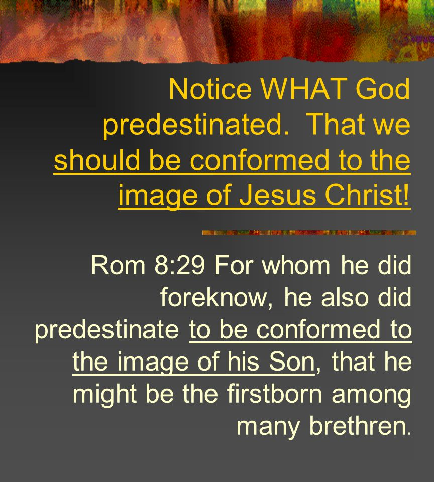 Notice WHAT God predestinated