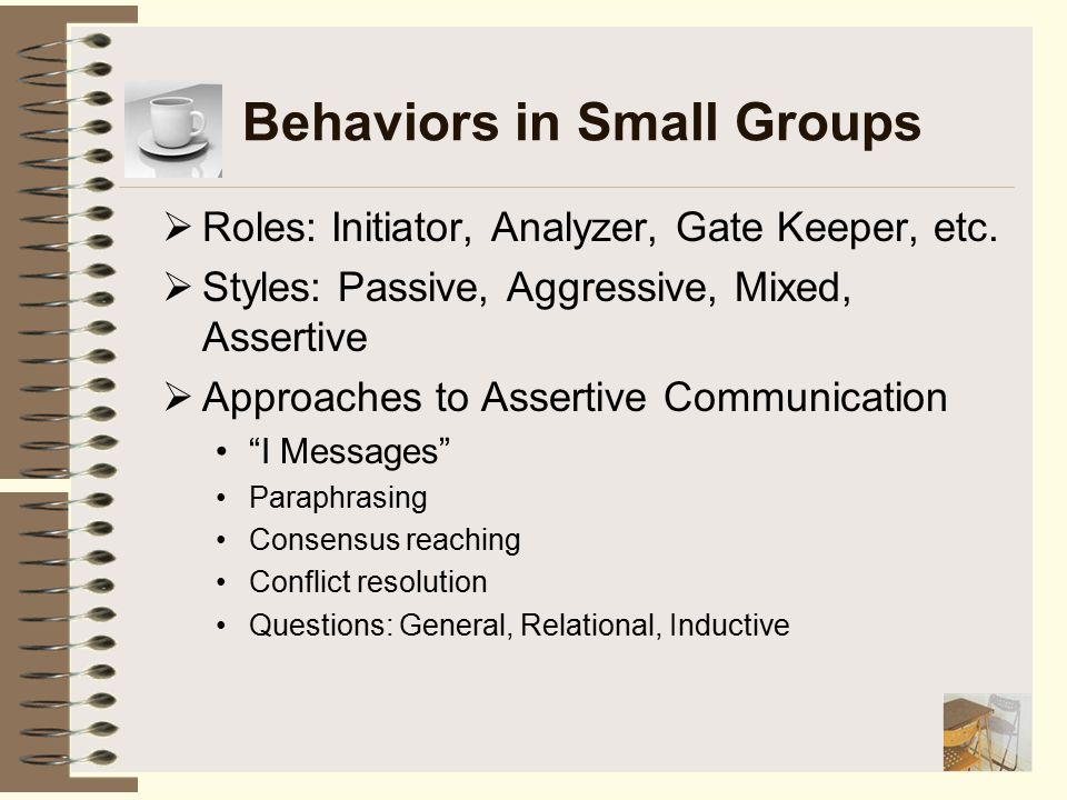Behaviors in Small Groups