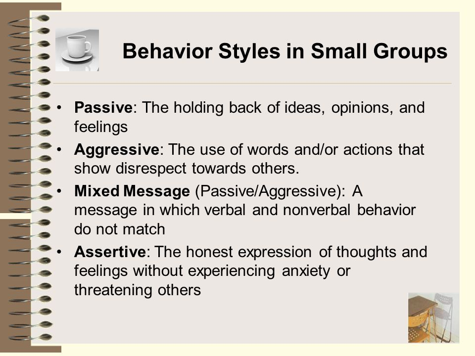 Behavior Styles in Small Groups