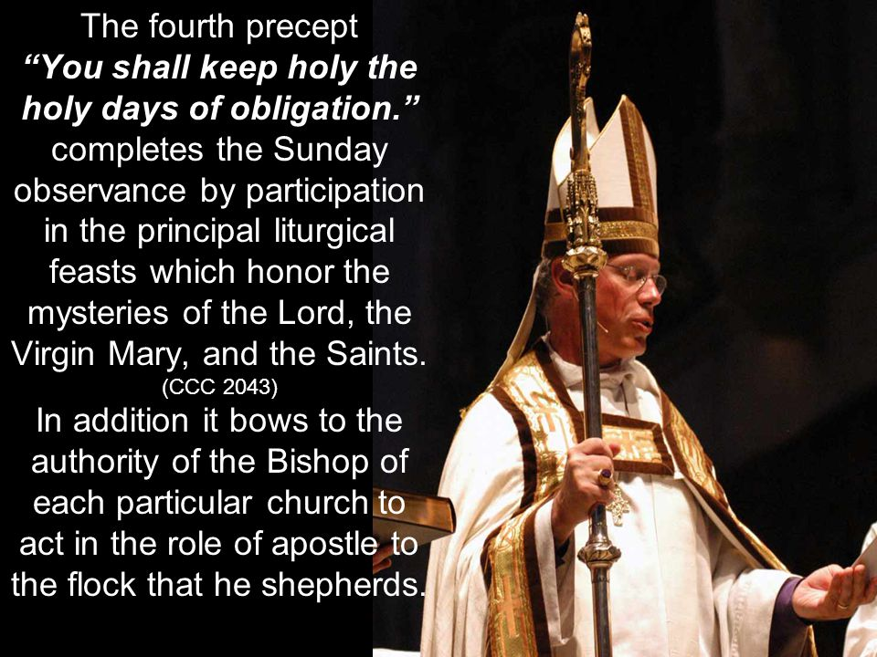 You shall keep holy the holy days of obligation.