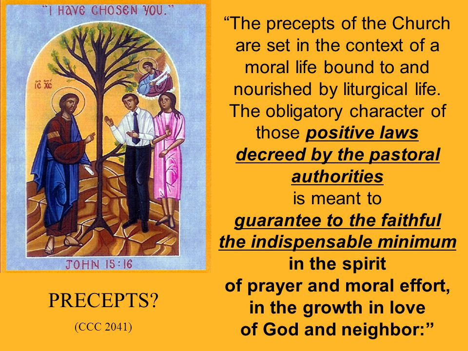 The precepts of the Church are set in the context of a moral life bound to and nourished by liturgical life. The obligatory character of those positive laws decreed by the pastoral authorities is meant to guarantee to the faithful the indispensable minimum in the spirit of prayer and moral effort, in the growth in love of God and neighbor: