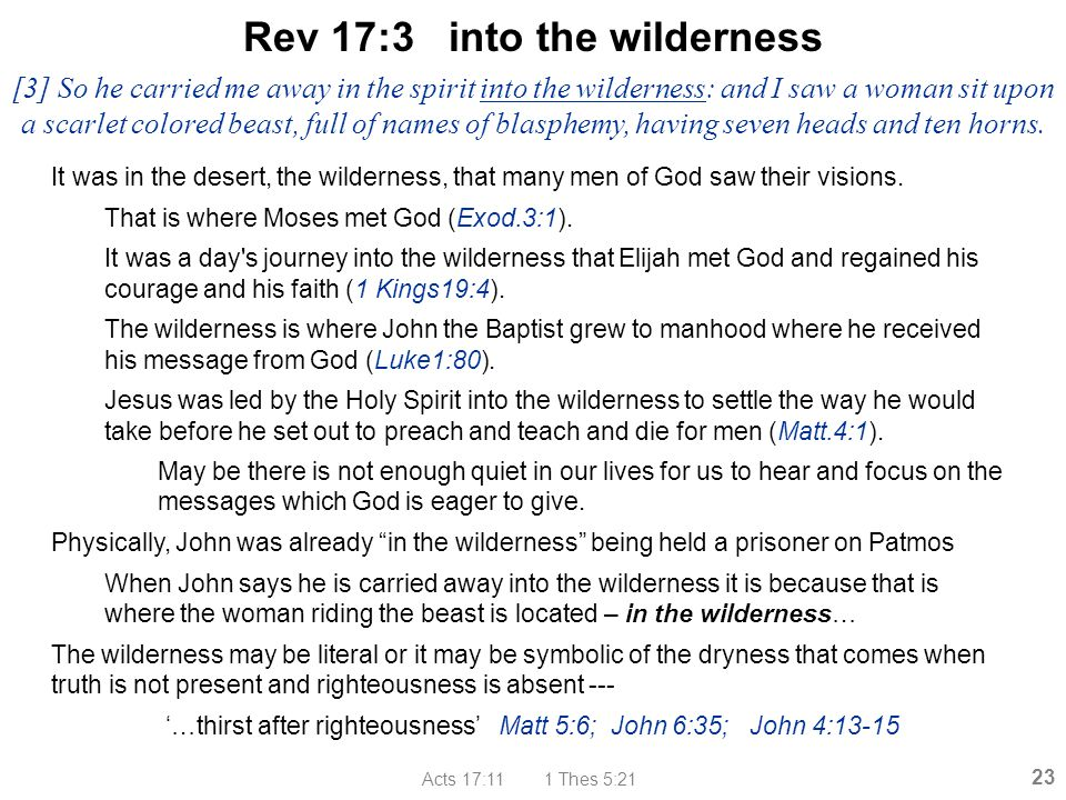 Rev 17:3 into the wilderness