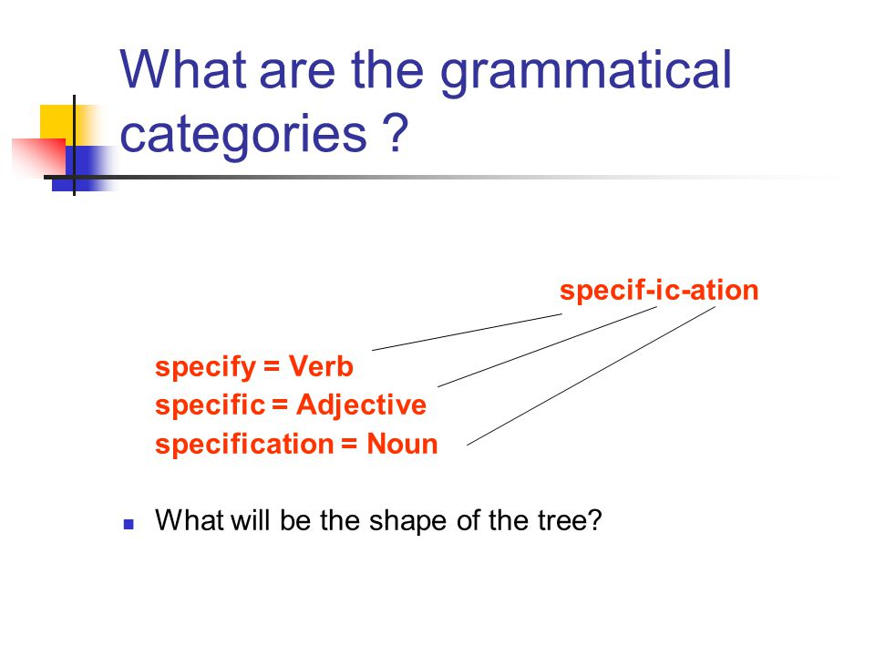 What are the grammatical categories