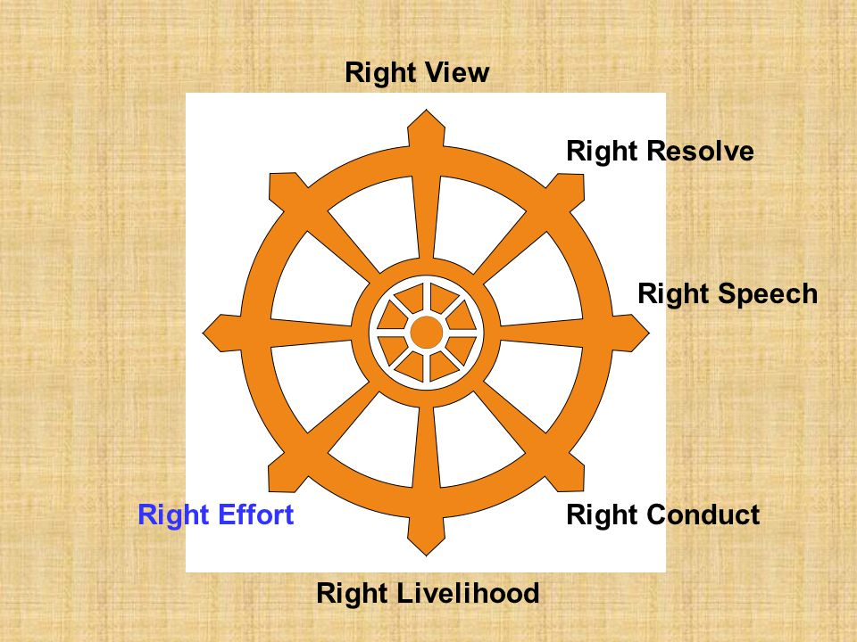 Right View Right Resolve Right Speech Right Effort Right Conduct Right Livelihood