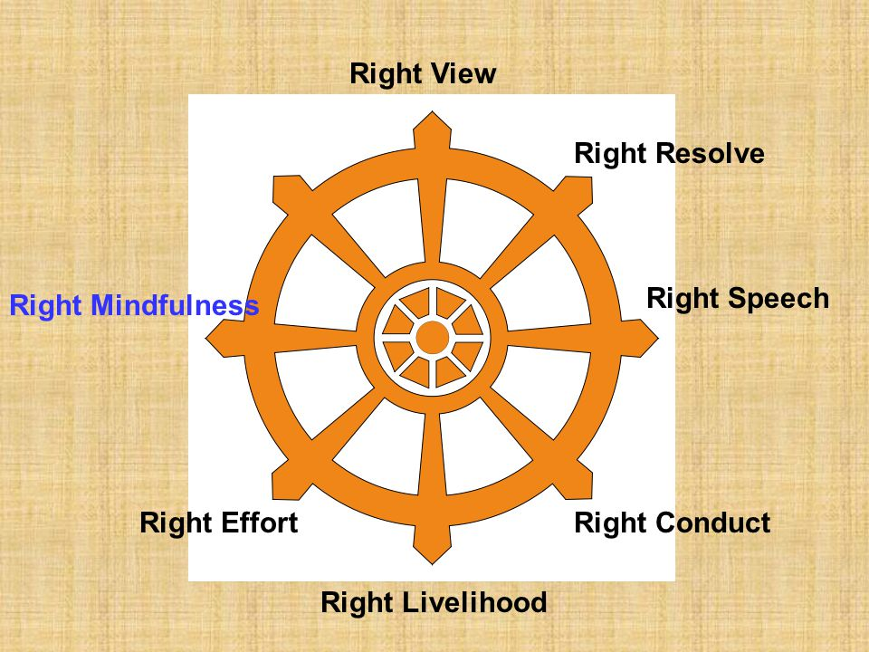 Right View Right Resolve Right Speech Right Mindfulness Right Effort Right Conduct Right Livelihood