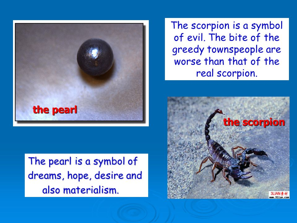 The scorpion is a symbol of evil