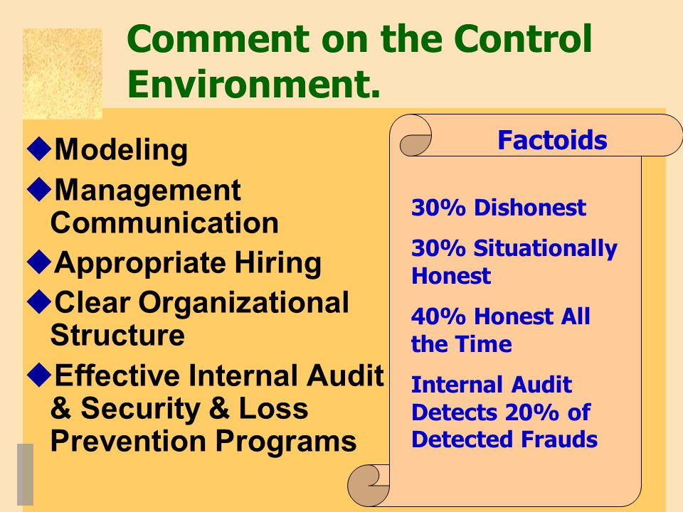 Comment on the Control Environment.