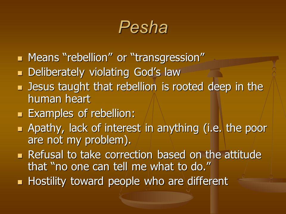 Pesha Means rebellion or transgression