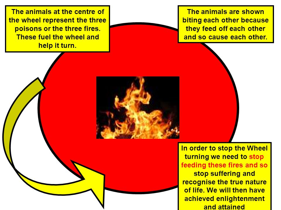 The animals at the centre of the wheel represent the three poisons or the three fires. These fuel the wheel and help it turn.