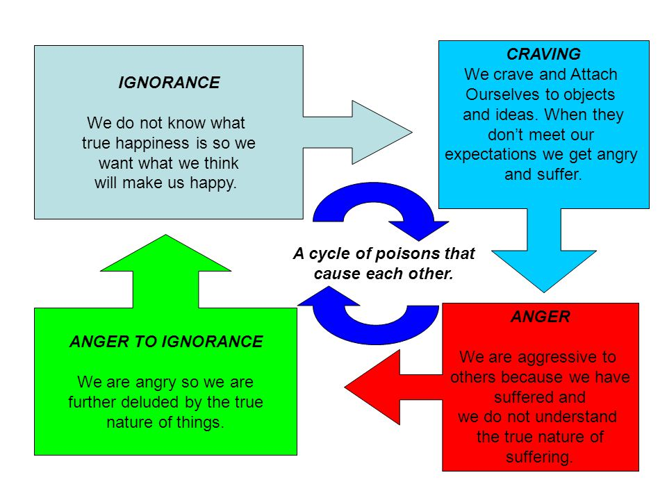 A cycle of poisons that cause each other.