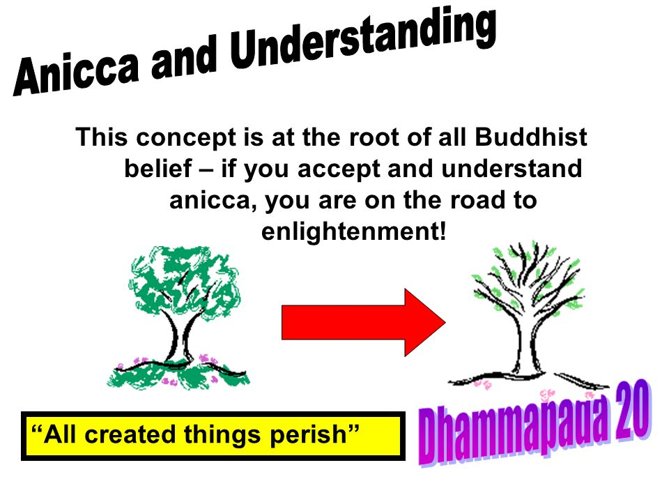 Anicca and Understanding