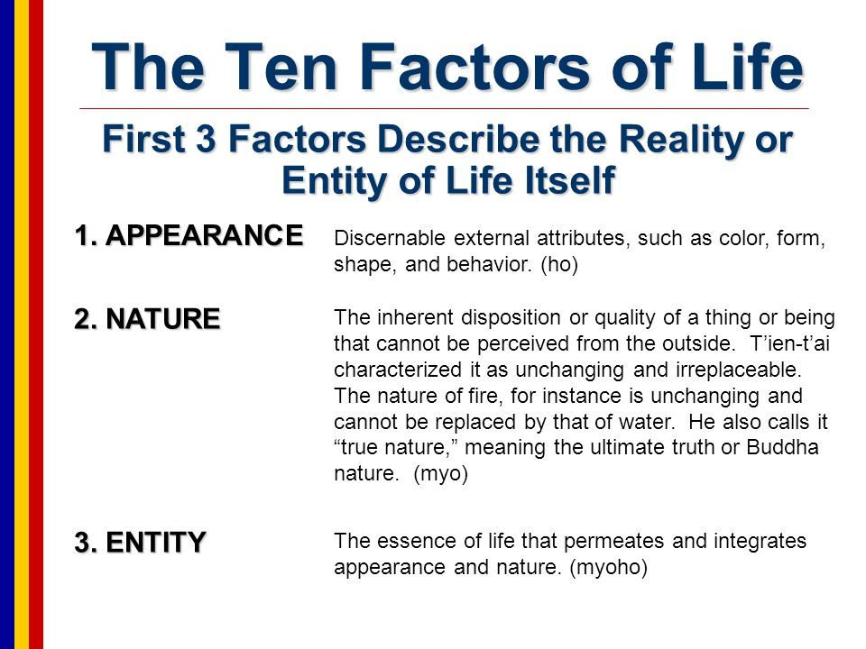 First 3 Factors Describe the Reality or Entity of Life Itself