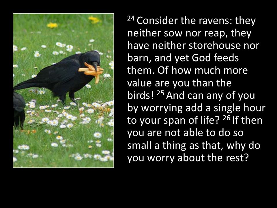 24 Consider the ravens: they neither sow nor reap, they have neither storehouse nor barn, and yet God feeds them. Of how much more value are you than the birds! 25 And can any of you by worrying add a single hour to your span of life 26 If then you are not able to do so small a thing as that, why do you worry about the rest