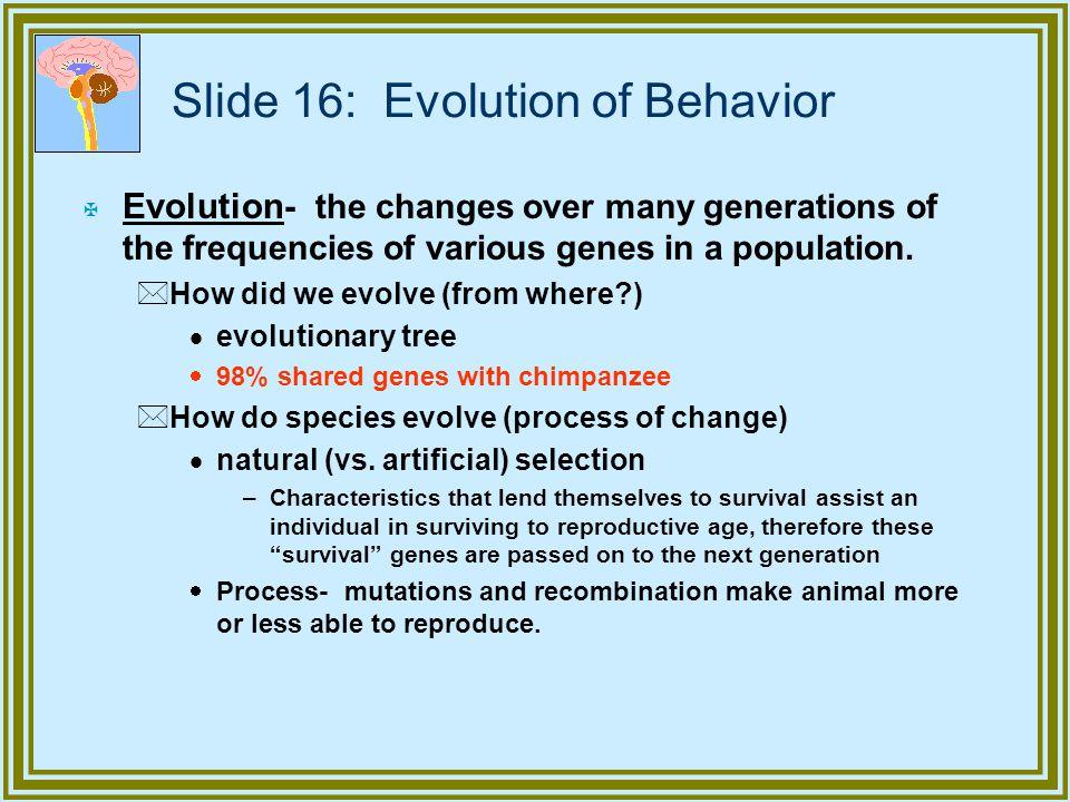 Slide 16: Evolution of Behavior
