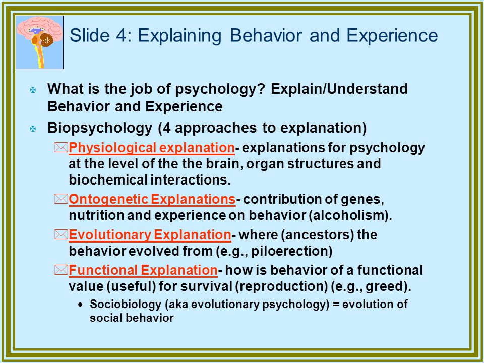 Slide 4: Explaining Behavior and Experience