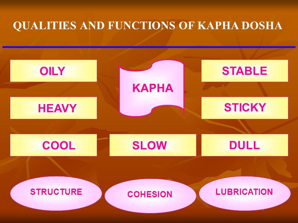QUALITIES AND FUNCTIONS OF KAPHA DOSHA
