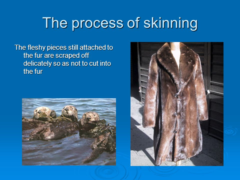 The process of skinning