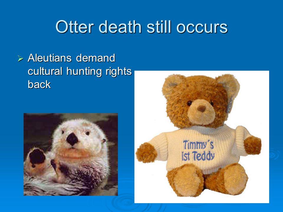 Otter death still occurs