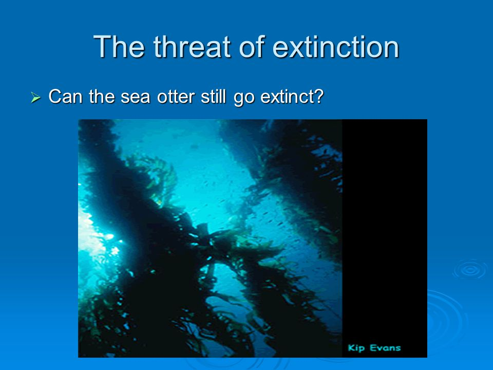 The threat of extinction