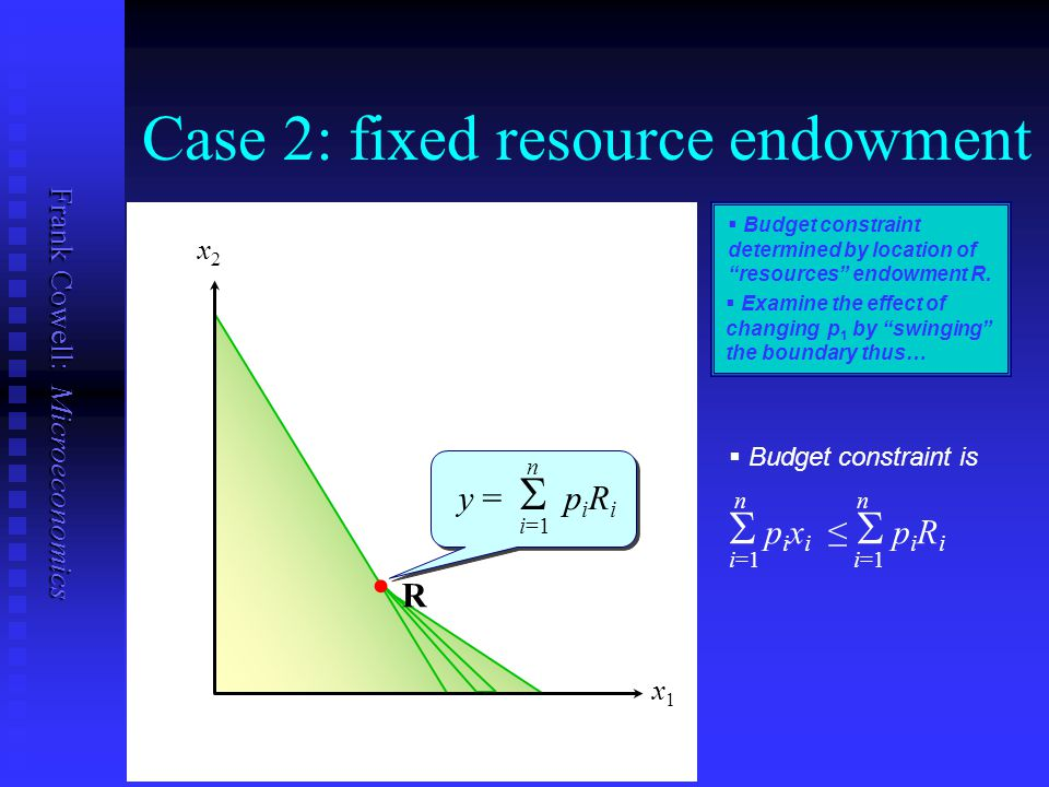 Case 2: fixed resource endowment