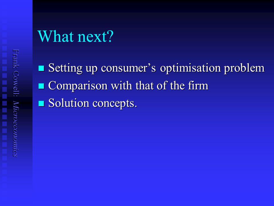 What next Setting up consumer's optimisation problem