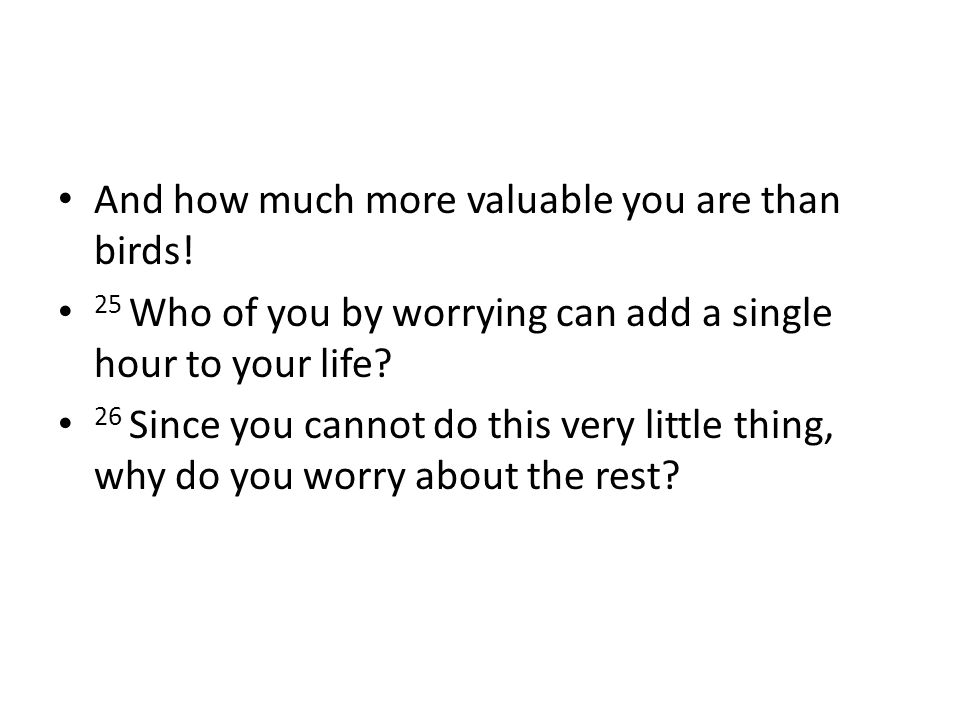And how much more valuable you are than birds!