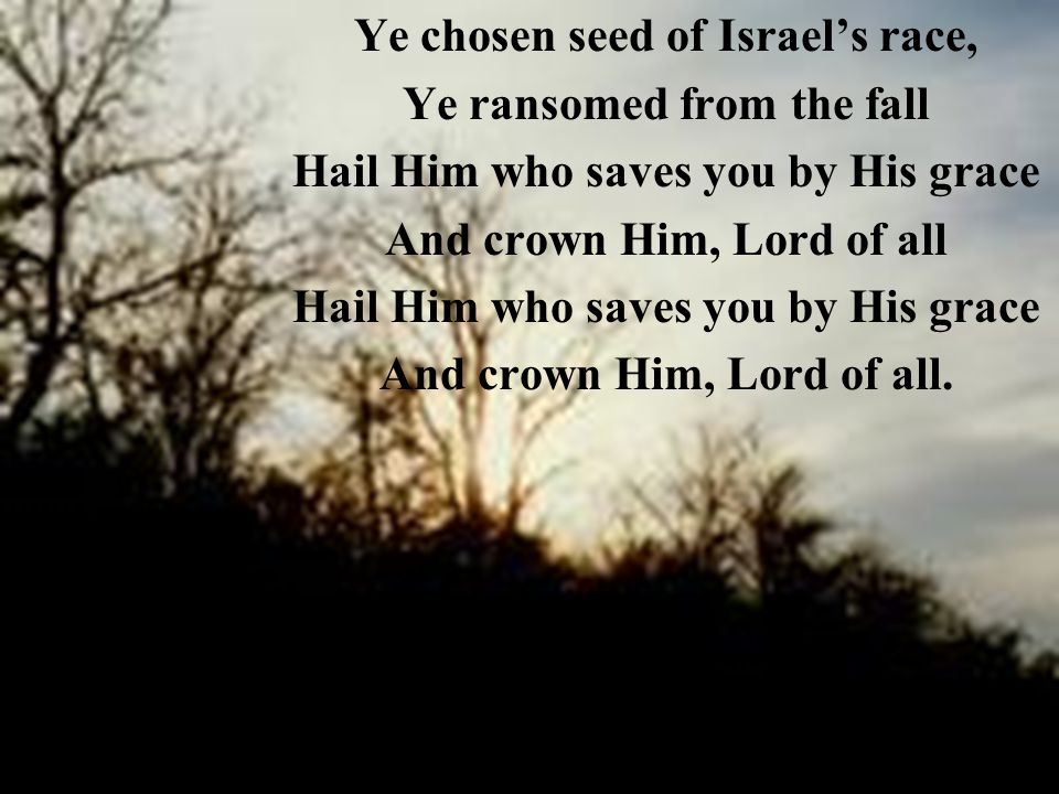 Ye chosen seed of Israel's race, Ye ransomed from the fall