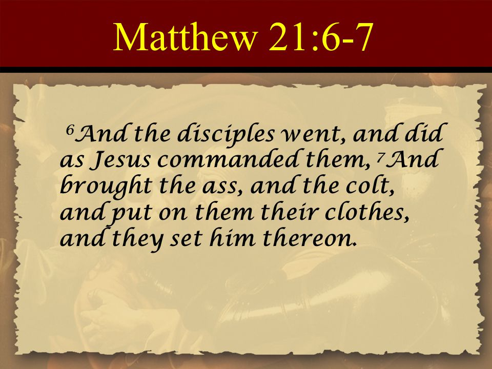 Matthew 21:6-7