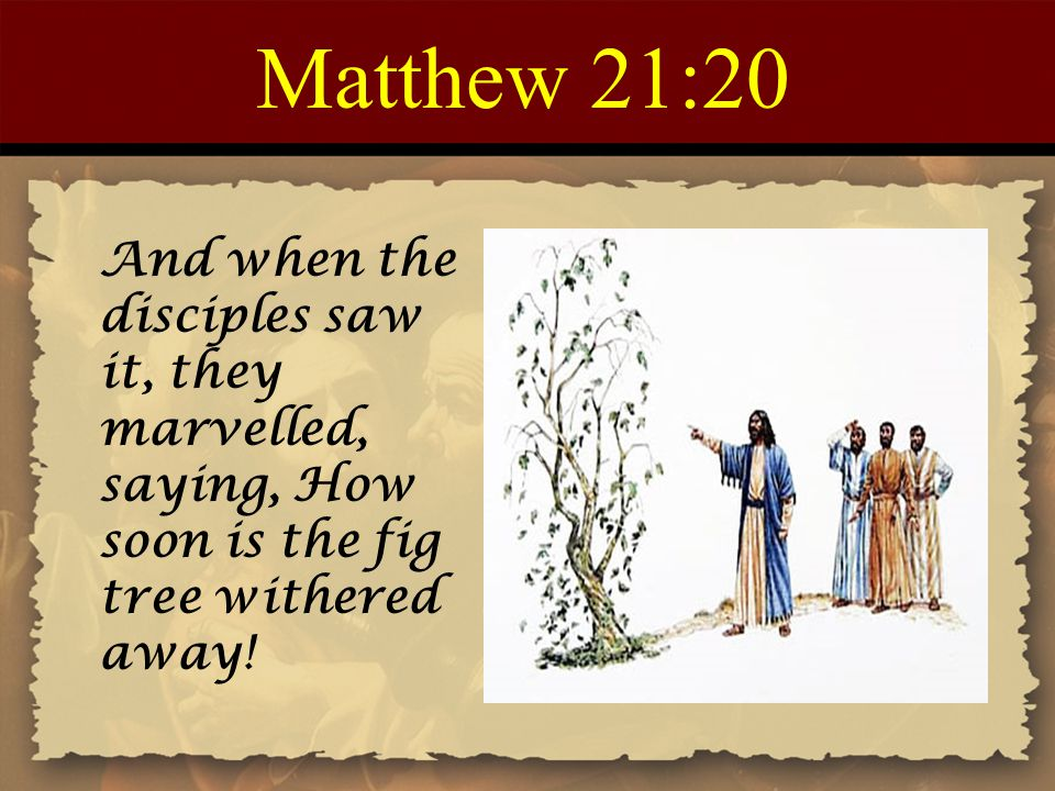 Matthew 21:20 And when the disciples saw it, they marvelled, saying, How soon is the fig tree withered away!