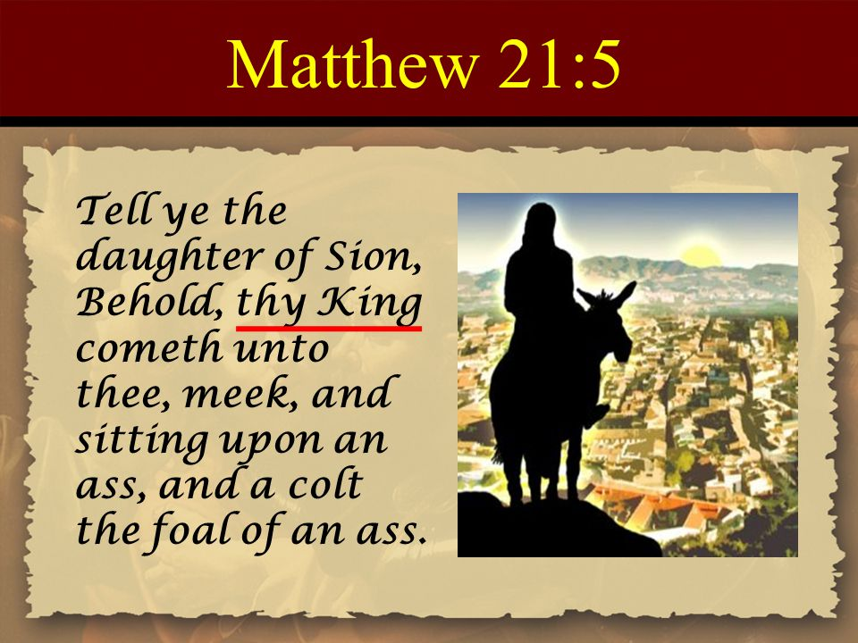 Matthew 21:5 Tell ye the daughter of Sion, Behold, thy King cometh unto thee, meek, and sitting upon an ass, and a colt the foal of an ass.