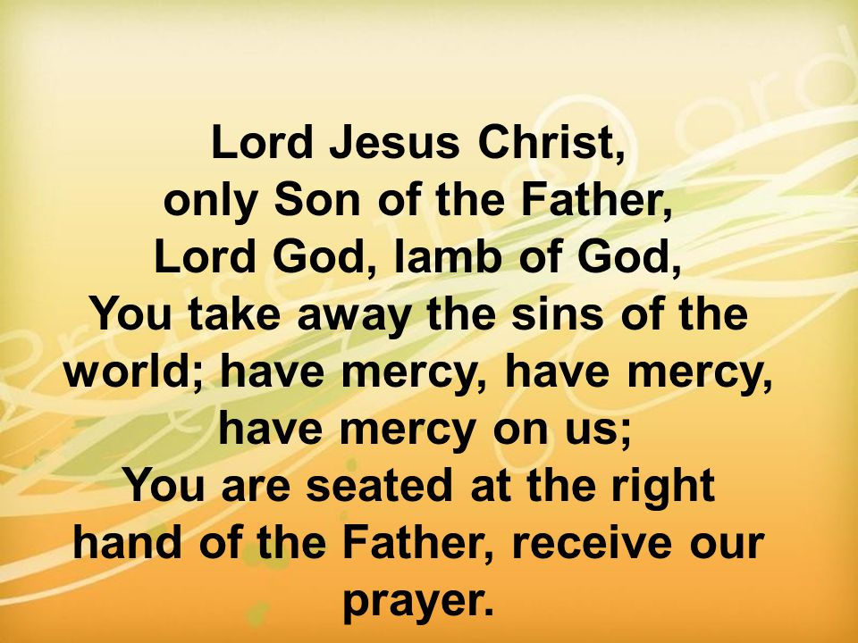 You take away the sins of the world; have mercy, have mercy,