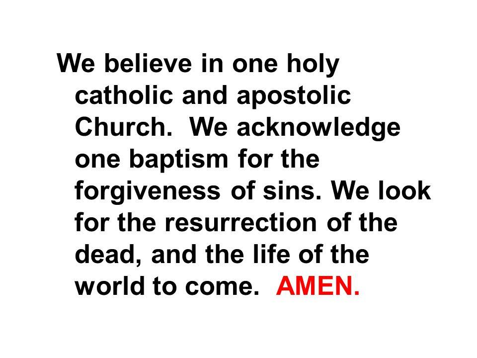 We believe in one holy catholic and apostolic Church