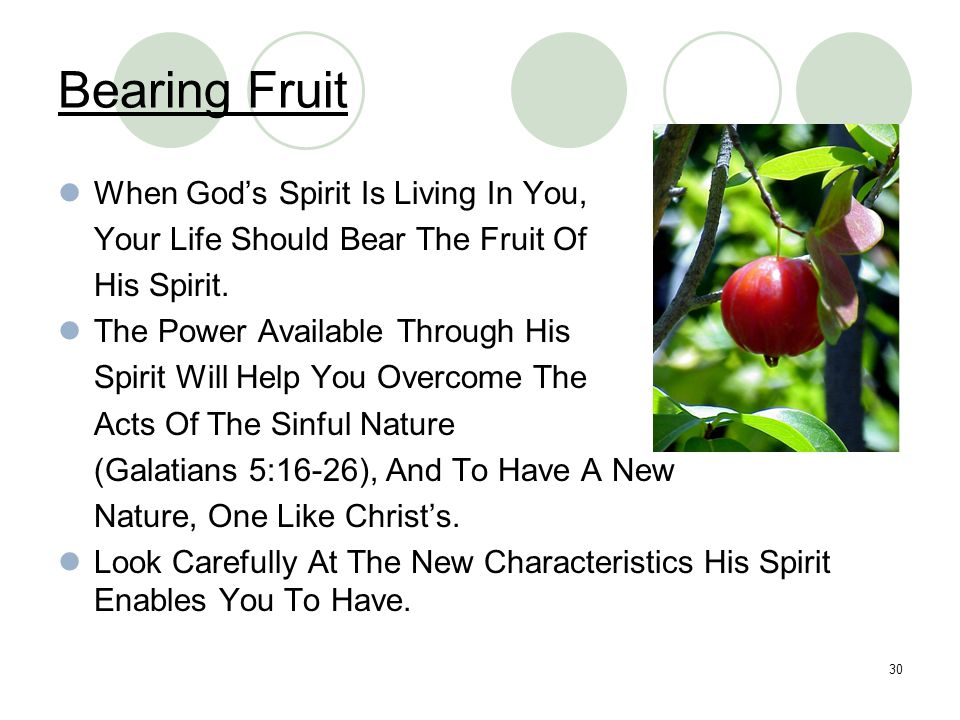Bearing Fruit When God's Spirit Is Living In You,