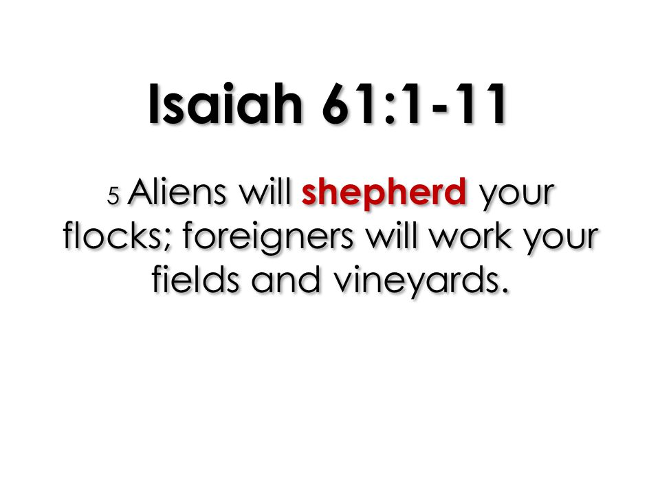 Isaiah 61:1-11 5 Aliens will shepherd your flocks; foreigners will work your fields and vineyards.