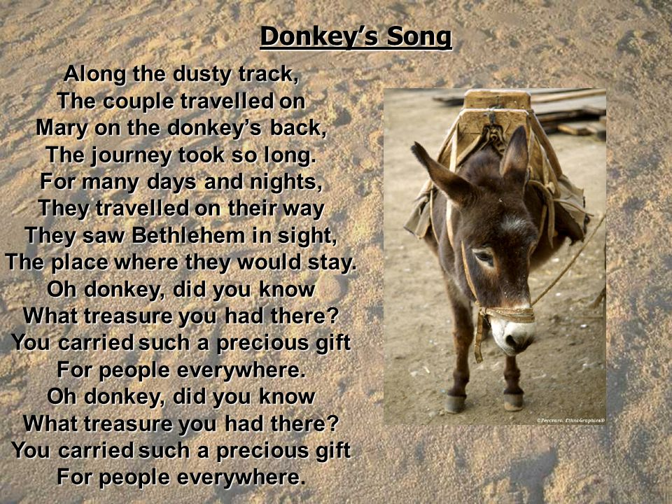 Donkey's Song Along the dusty track, The couple travelled on