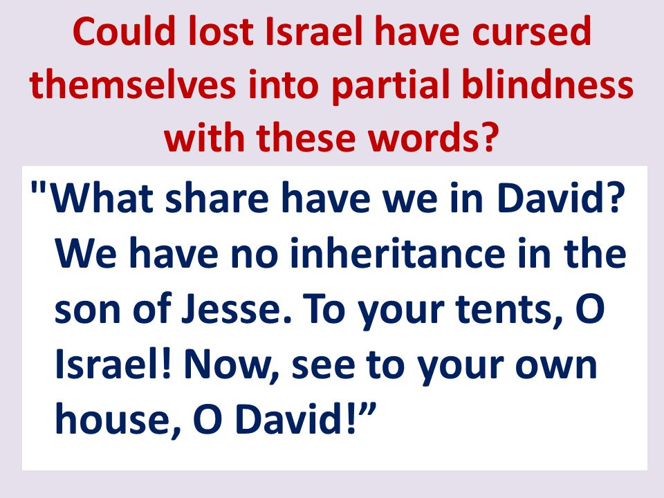 Could lost Israel have cursed themselves into partial blindness with these words