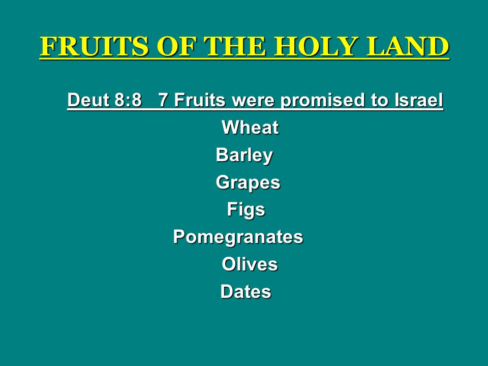 Deut 8:8 7 Fruits were promised to Israel