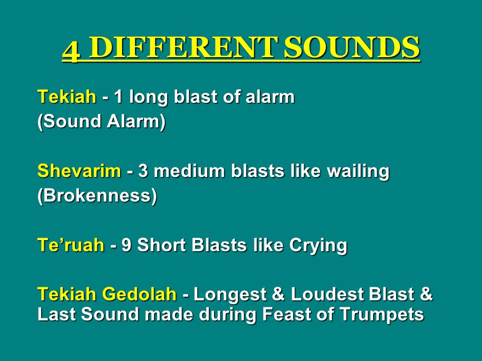 4 DIFFERENT SOUNDS Tekiah - 1 long blast of alarm (Sound Alarm)