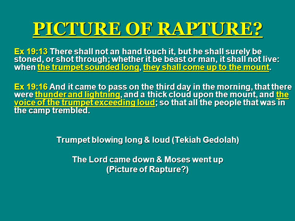 PICTURE OF RAPTURE