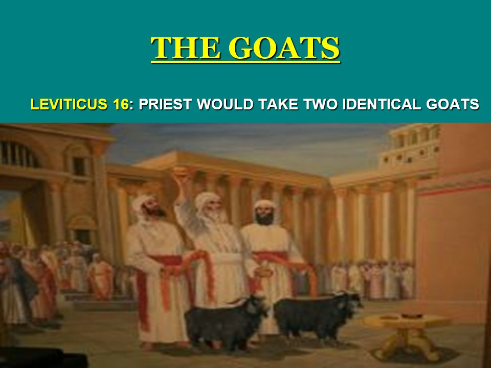 LEVITICUS 16: PRIEST WOULD TAKE TWO IDENTICAL GOATS