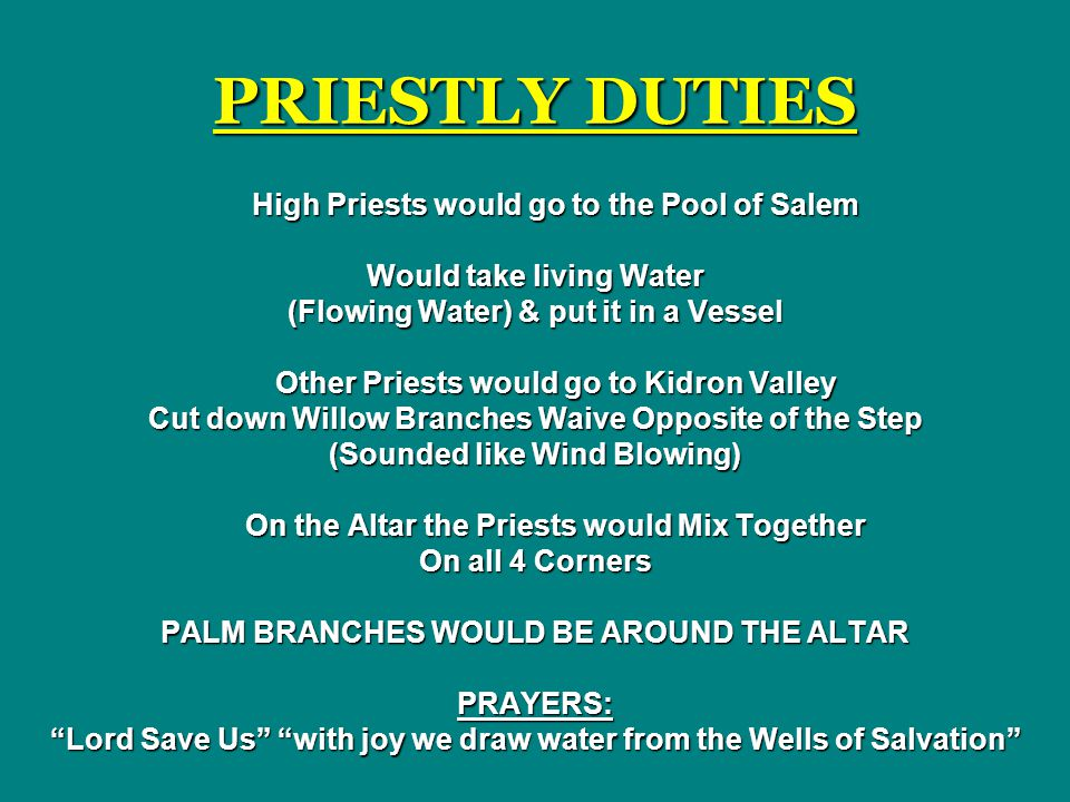 PRIESTLY DUTIES High Priests would go to the Pool of Salem