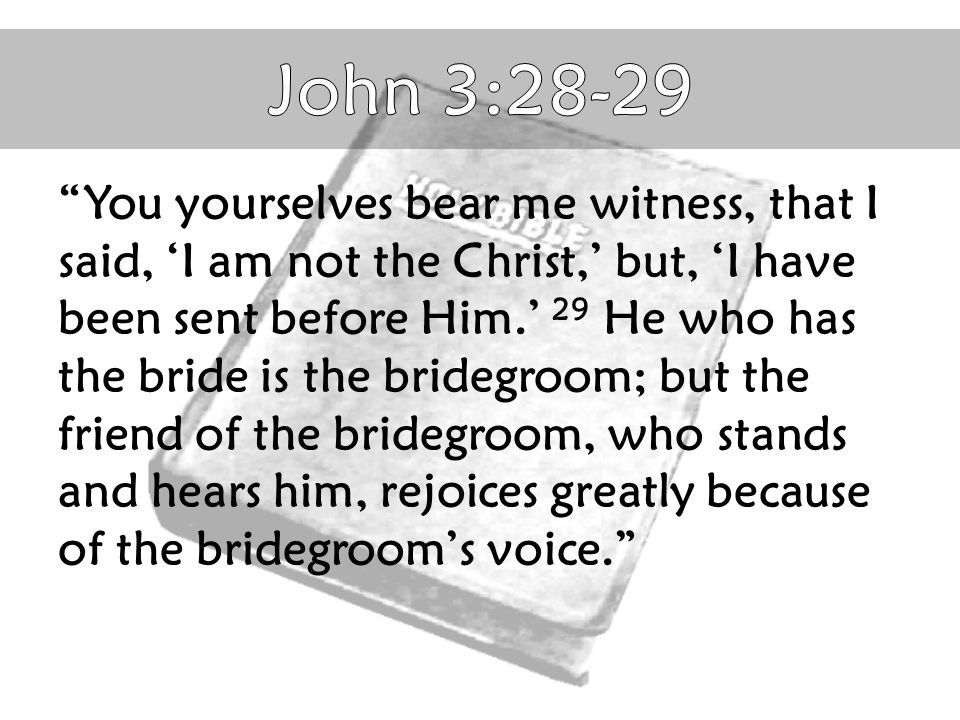 John 3:28-29