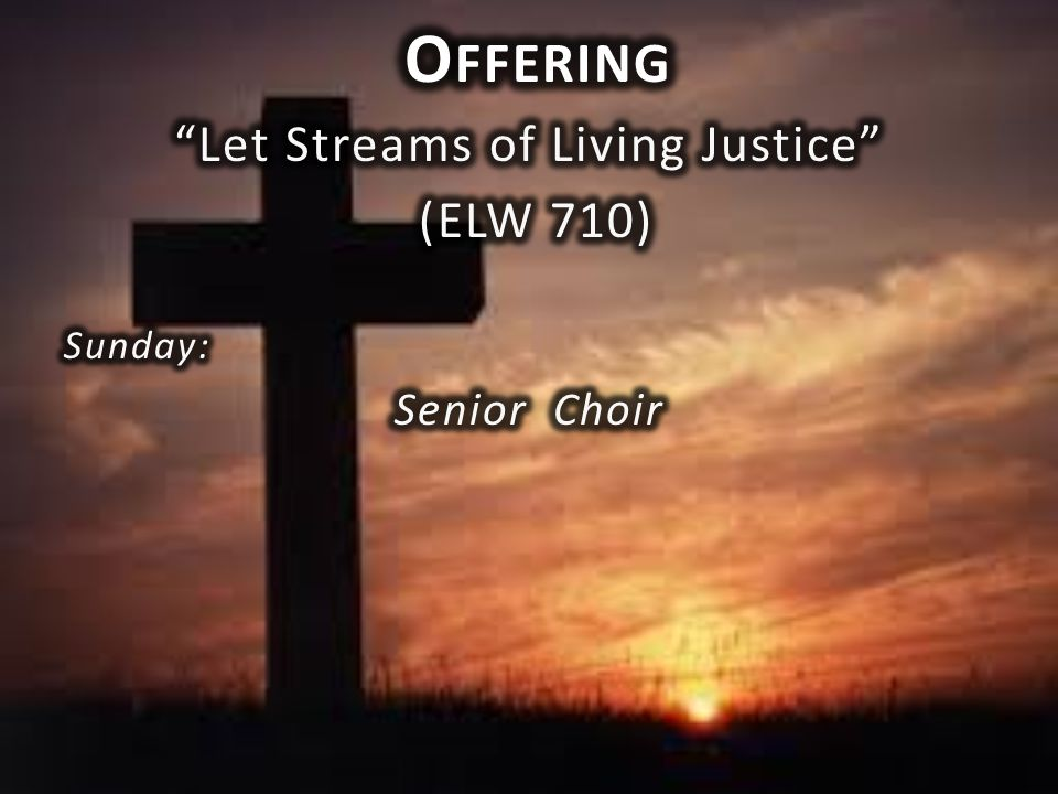 Let Streams of Living Justice
