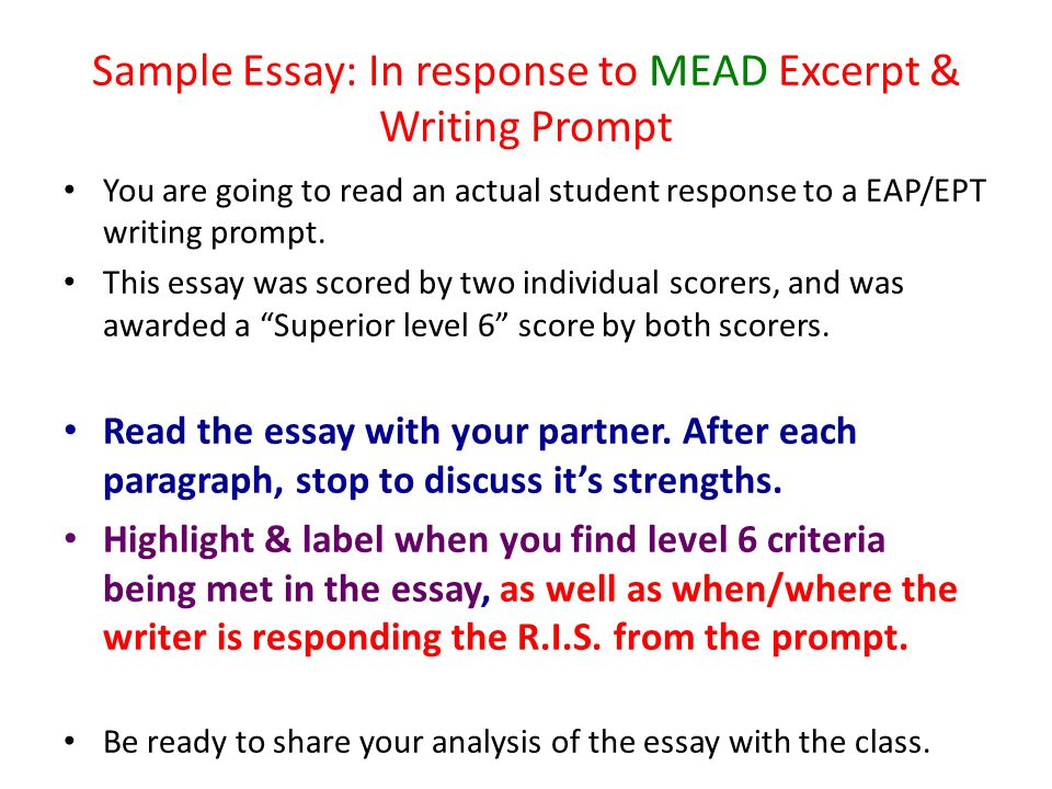 Sample Essay: In response to MEAD Excerpt & Writing Prompt